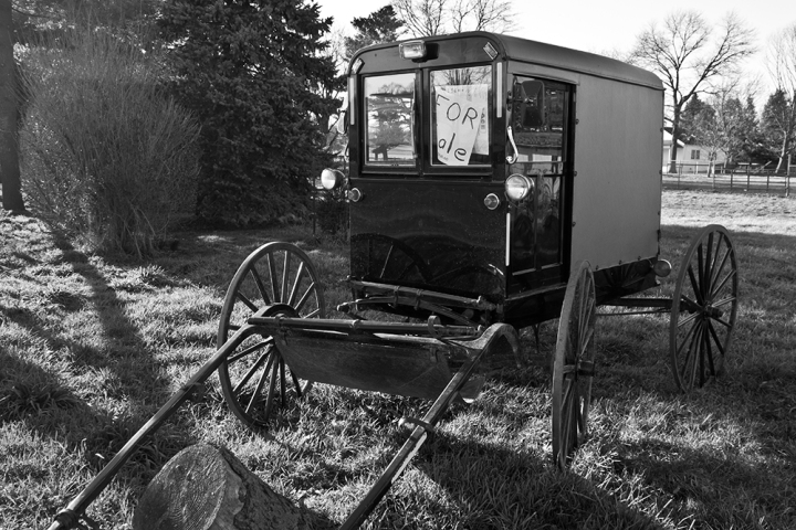 Amish Buggy For Sale