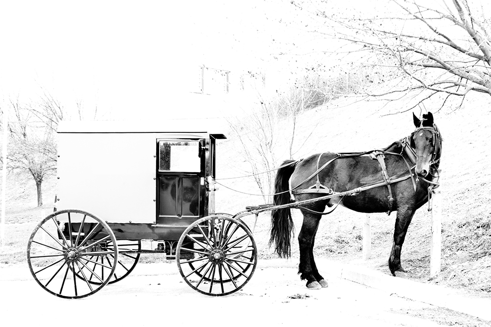 Horse and buggy parking