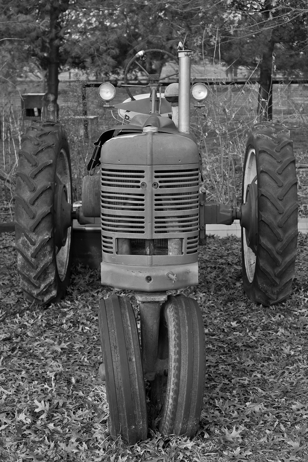 Tractor (obviously)
